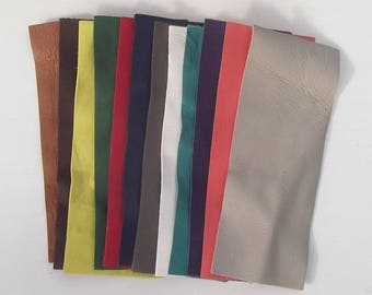 Set of 12 rectangles lambskin various colors.