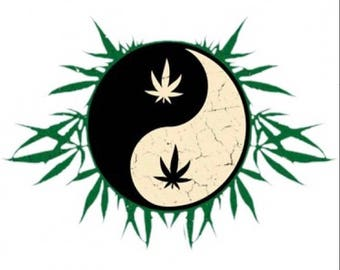 Yin Yang With Leaves