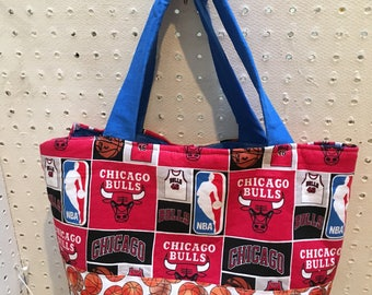 Smaller size Detroit Pistons Tote/Purse