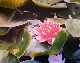 Waterlilies original painting