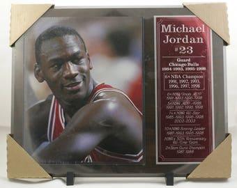 Michael Jordan Chicago Bulls Plaque