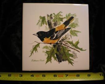 Vintage 70s Ceramic Decorative Screenprint Wildlife Baltimore Oriole Bird Tile