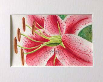 """LILY Watercolor Original Painting 8""""x5"""" flower"""