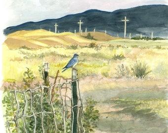 Bluebird in Deer Lodge