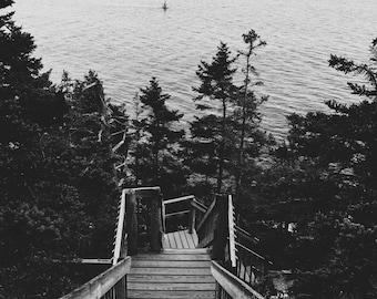 """6""""x6"""" Stairway Canvas"""