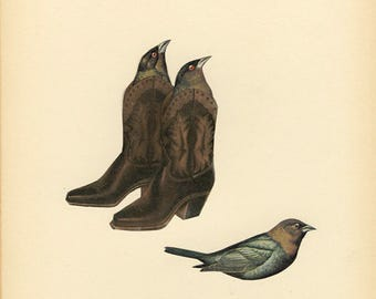 Cowbirds. Original collage by Vivienne Strauss