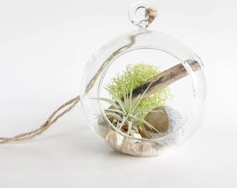 Terrarium Air Plant Ema Stone // Hanging Terrarium - Tillandsia - Airplant - Rocks - Natural Stones - Colors - Rainbow - Crystal - Love