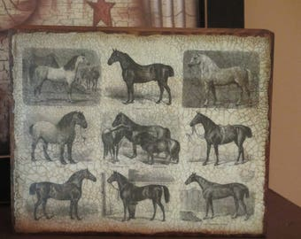 "Wood 5 1/2"" Plaque w/9 Horses"