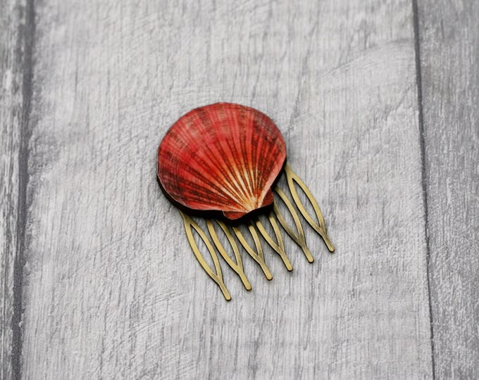 Shell Hair Slide, Seaside Hair Comb, Nautical Hair Grip, Girls Hair Accessory