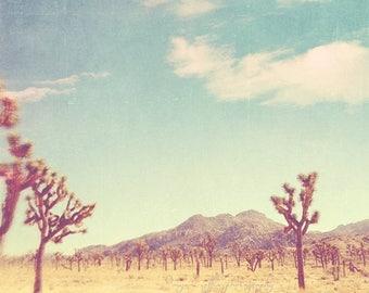 SALE Joshua Tree photography, Joshua Tree national park California travel, Palm Springs desert photography, blue yellow, Coachella Myan Soff