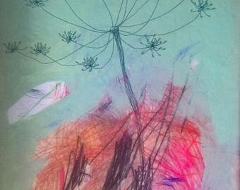 """Print on Hahnemuhle Photo Rag, """"Queen Anne's Lace"""""""