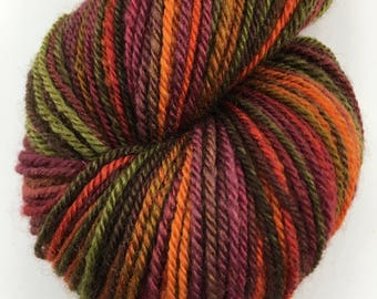 "Handspun Yarn Sportweight BFL ""Living Color"" 300 yds."