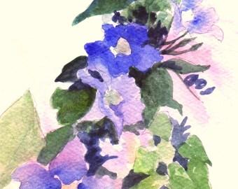 "Flower Painting, ""Sky Vine,"" Watercolor Painting, 5x7"