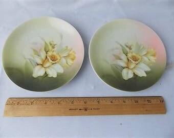 2 Vintage R. S. Germany Porcelain Daffodil Flower Plates