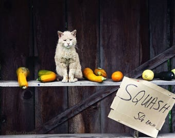 Fall Photograph, Ugly Cat Photo, Seasonal Wall Art, Autumn Fall Decor, Rustic Farmhouse Art Print, Vegetable Stand Primitive