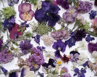 Bulk Dried Flowers, Wedding decor, Dried Petals, Dried Leaves, Craft Supplies, Biodegradable, Flower Girl, Centerpiece, 45 Cups Confetti