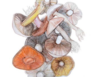 minimalist watercolor print: Mushrooms