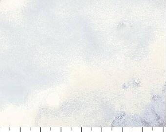 Northcott - Ambrosia - Twilight - Light Tonal - Grey Fabric by yard or select cut  21256-91