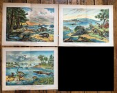 RESERVED - C. 1878 set of 3 DINOSAUR PRINTS - antique lithographs of prehistoric animals - Triassic - Cretaceous & Jurrassic