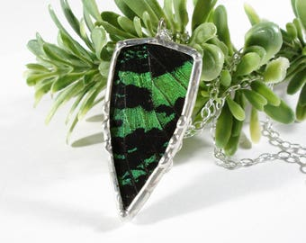Real Sunset Moth Necklace, Moth Pendant, Green Butterfly Wing Jewelry, Sterling Silver Chain