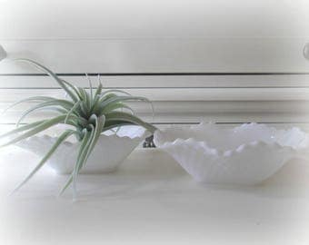 Vintage Milk Glass Bowls Succulent Planters Set of Two Hobnail Milk Glass