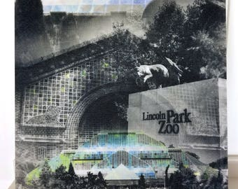 """Chicago 13"""" Canvas Wall Art - Lincoln Park Zoo Photo Collage"""