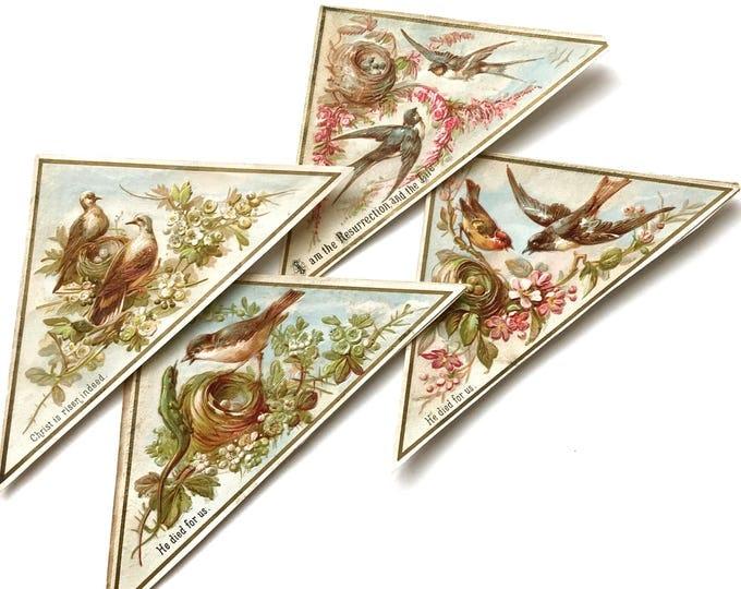 Antique Victorian Scrap Easter Litho Birds, Nests, Lizard, Eggs, Flowers