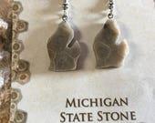 Michigan Petoskey Stone Earrings, Jewelry, Gemstone, Fossil, State Stones, FREE SHIPPING