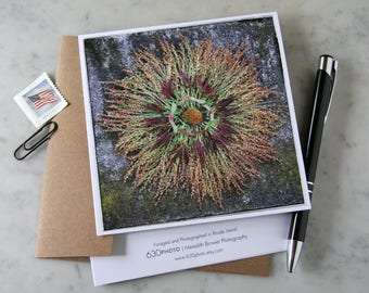 Ombre Mandala ~ One 5x5 Square Note Card (with envelope, blank inside, no message)