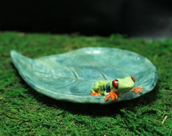 Red Eye Tree Frog trinket dish or spoon rest handmade pottery