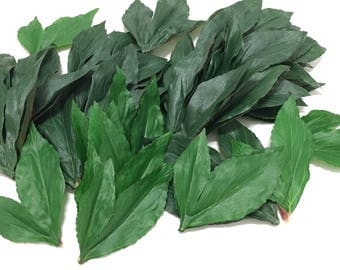 40 Green Artificial Peony Leaves in Two Sizes - Artificial Flowers, Silk Flowers, Flower Crowns, DIY Wedding, Hair Accessories, Millinery