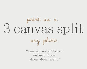 Choose any photo as a 3 CANVAS Split