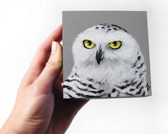 Snowy owl painting, white owl art block, square painting, raptor artwork, white owl, realistic raptor art, wildlife painting, hedwig