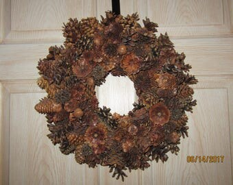 Dried Pine Cones in Glass Bowl or Wood Tray with Feathers and Fungus from Darlas Closet