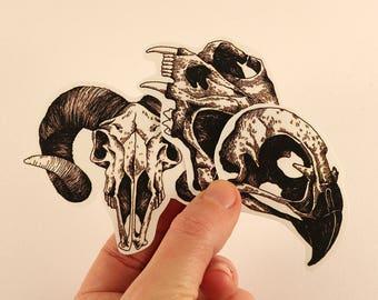 animal skulls illustration stickers laptop labels tags ink