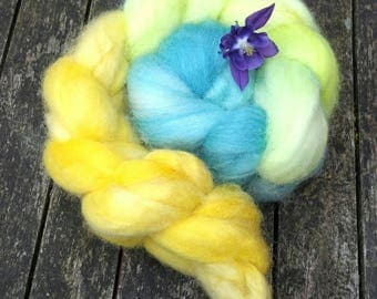 Hand dyed spinning fibre, Bluefaced Leicester, 120g, BFL combed tops, gradient dyed spinning fibre