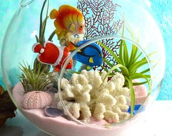 Bahama Beach Terrarium Kit ~ 3 Fish Swimming ~ Faux Coral ~ Glass Terrarium with 3 Air Plants ~ Beach Decor ~ Summer Decor ~ Aquarium ~ Gift