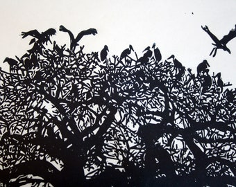 African Navy Blue Birds in a Tree