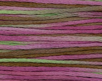 SPUMONI 4147 : Weeks Dye Works WDW hand-dyed embroidery floss cross stitch thread at thecottageneedle.com variegated