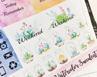 0026 Watercolor Succulents Sticker Set 2 Sheet Sampler Pack Stickers Planner Stickers Erin Condren Life Planner Happy Planner