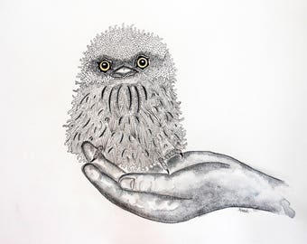 Original Watercolor Tawny Owl , Owl Art, Tawny Owl Painting, Owl Decor, Owl Wall Art, Wildlife Watercolor, 8x10