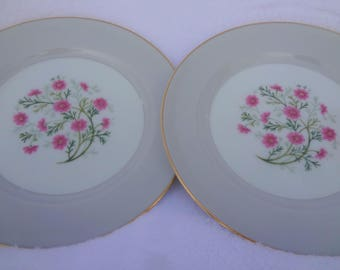 Vintage Noritake China Plates Laguna 5159