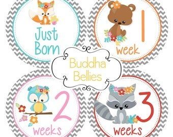 BUNDLE PACK of 20 stickers - Woodland Animals Baby Month Stickers - Just Born Sticker - Baby Girl Monthly Baby Stickers - Baby Milestones