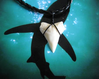 Shark Tooth Necklace, Modern Day White Shark tooth, Braided leather, Black wire wrapped