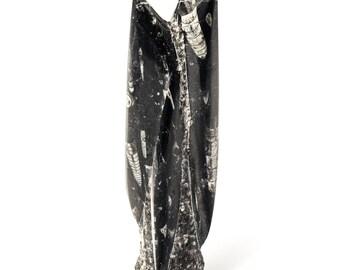 Orthoceras Sculpture