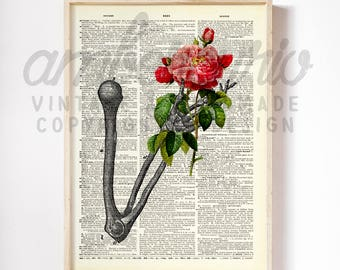 Living Dead Roses Victorian Anantomy Inspired  Collage Art Print on an Unframed Upcycled Bookpage
