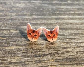 Abyssinian cat earrings jewelry pet animal