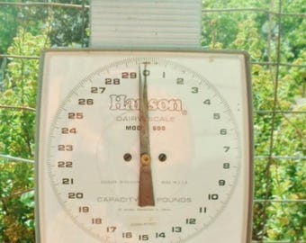 Vintage Stewart By Oster Farm 'N' Barn Dairy Scale, Model #8050, Made In USA, Industrial, Enamel, 60 Pound Capacity, Metal