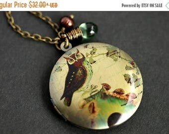 BACK to SCHOOL SALE Great Horned Owl Locket Necklace. Owl Necklace with Earthy Green Teardrop and Brown Fresh Water Pearl. Bronze Locket. Ha