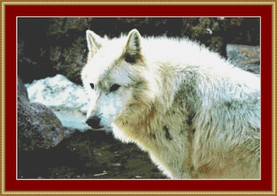 The Face Of A Wolf Cross Stitch Pattern /Digital PDF Files /Instant downloadable